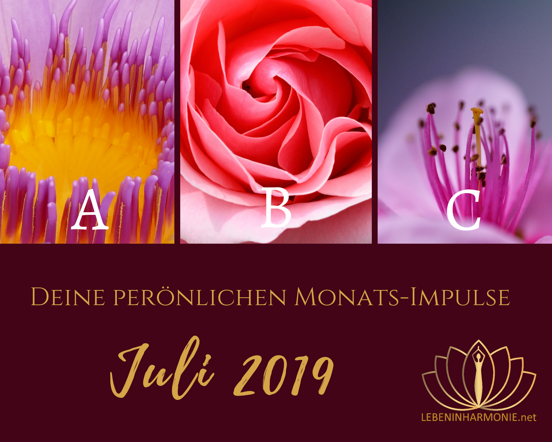 Monatsimpulse Juli 2019