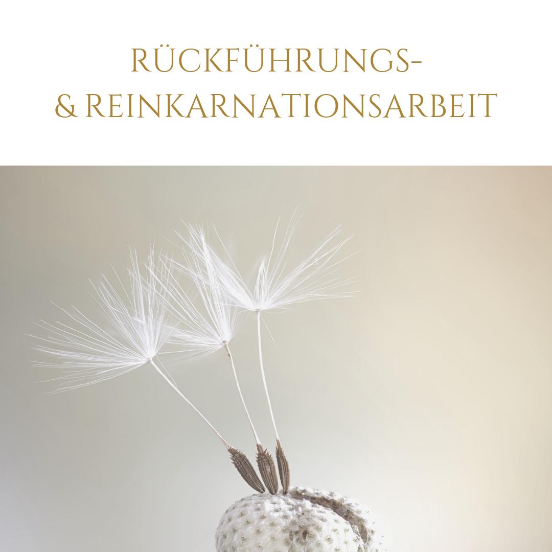 Rückführungs- u. Reinkarnationsarbeit_Leben in Harmonie